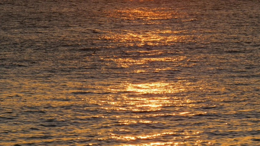 Golden glisten of sunlight reflects on the sunset sea surface. Sparkling sunlight over the calm water | Shutterstock HD Video #1039943390
