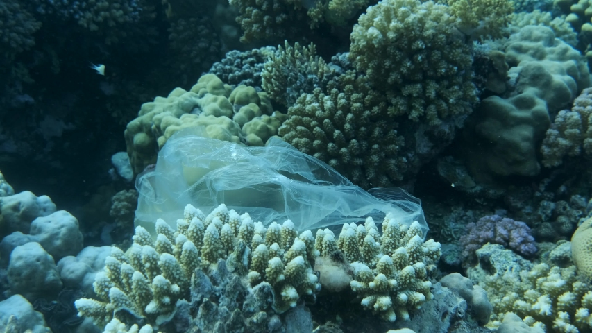 Plastic pollution in ocean. Plastic bag drifting on the beautiful coral reef, clings to him is picked up by the wave and floats further. Plastic debris on colorful tropical reef. 4K/50fps #1039959260