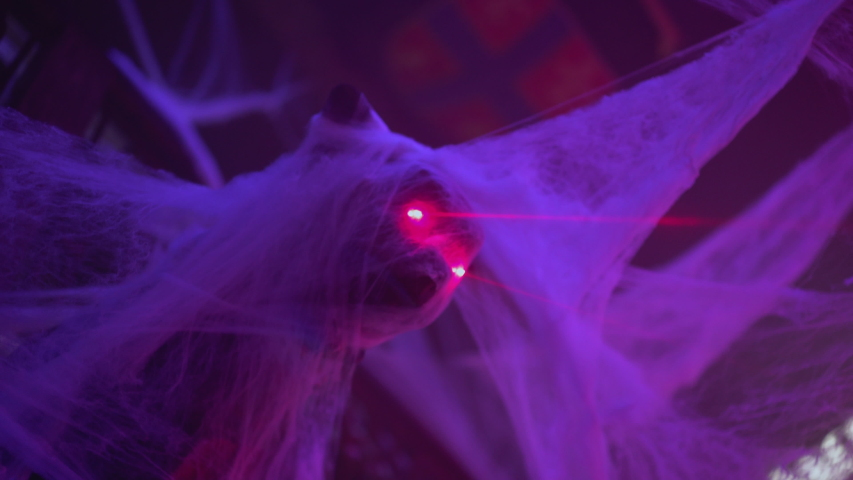 Scary Halloween decorations covered with spider web, nightclub celebration   Shutterstock HD Video #1042282570