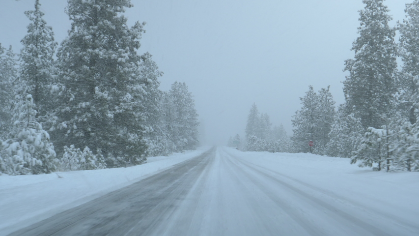 POV: Driving down a snowy country road in Washington during a severe blizzard. Cool first person view of the snowy pine forests surrounding an empty snow covered road. Winter commute from Spokane. | Shutterstock HD Video #1044956440