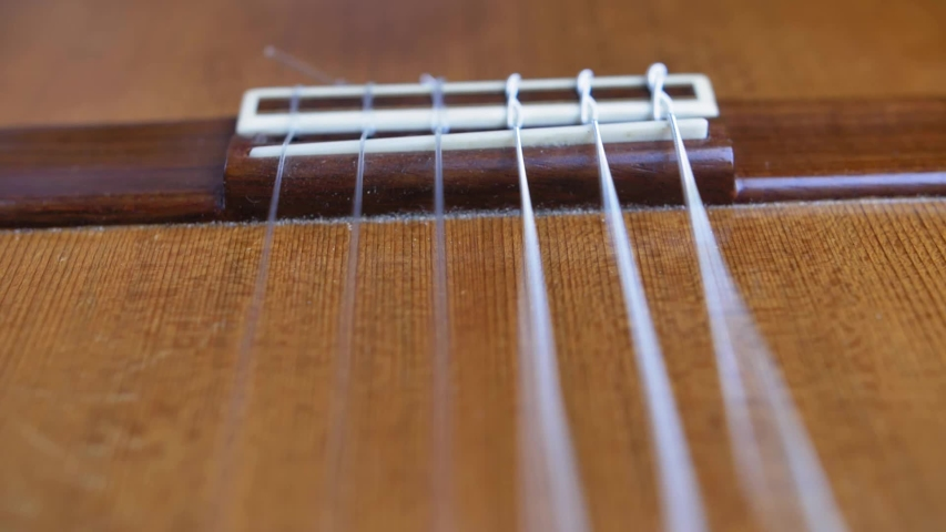 Classical Guitar Strings Vibrating when Song is Played Slow Motion | Shutterstock HD Video #1046957500