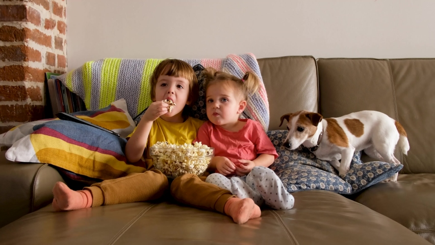 Little boy and girl eating fresh popcorn and watching interesting movie while sitting on sofa near cute dog at home | Shutterstock HD Video #1049862160