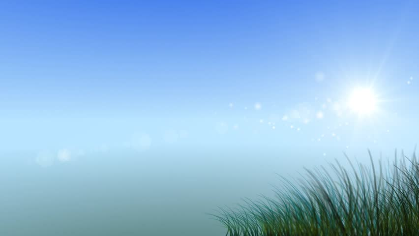growing grass and flowers on clear sky background