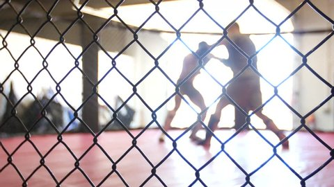 MMA fighters spar in a boxing cage.