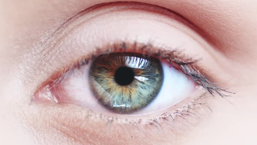 Macro Close-up eye blinking. Slow Motion, 120 fps. Young Woman is opening and closing her beautiful eye.  #11372600