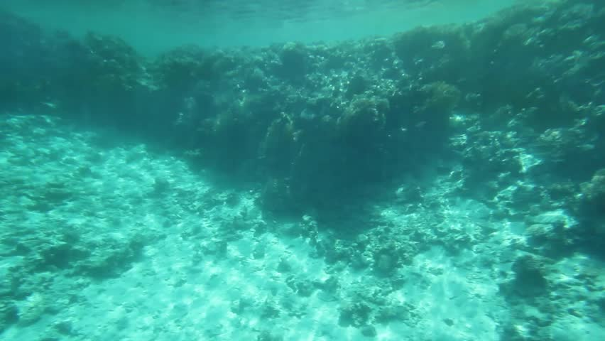 Seamless Looping Of An Underwater Texture Stock Footage Video