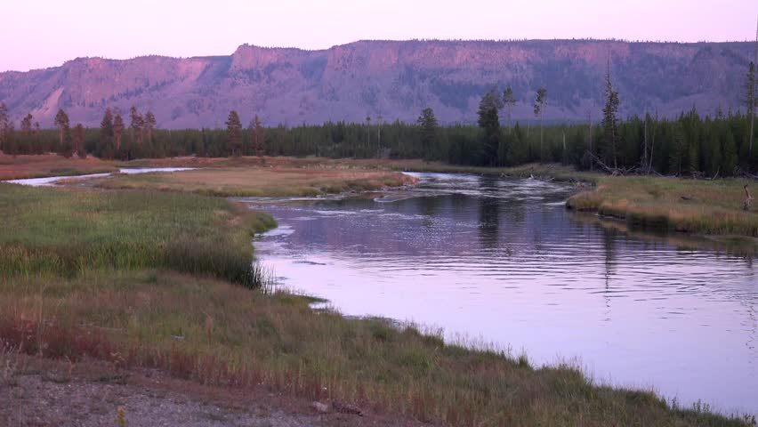 Yellowstone National Park, Madison River, flowers, beautiful quiet river with mountains at sunset