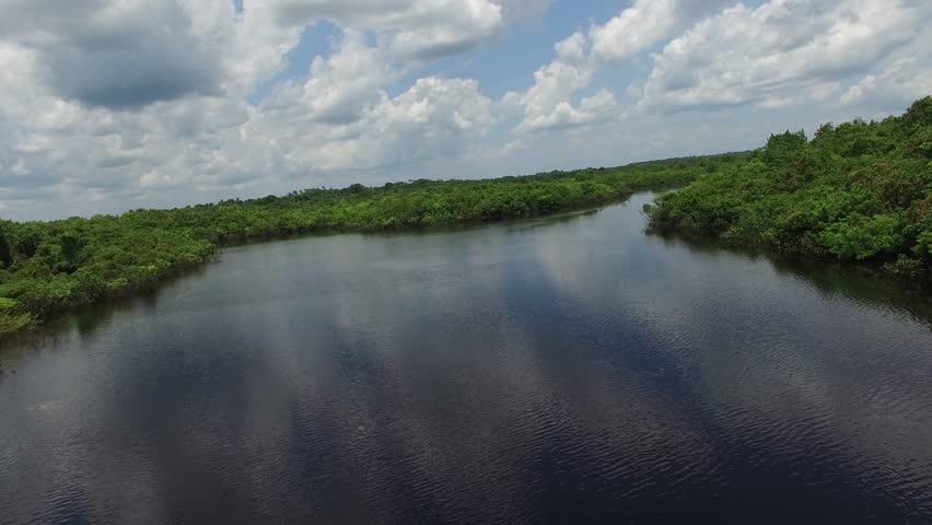 Fly in Amazon River, Brazil