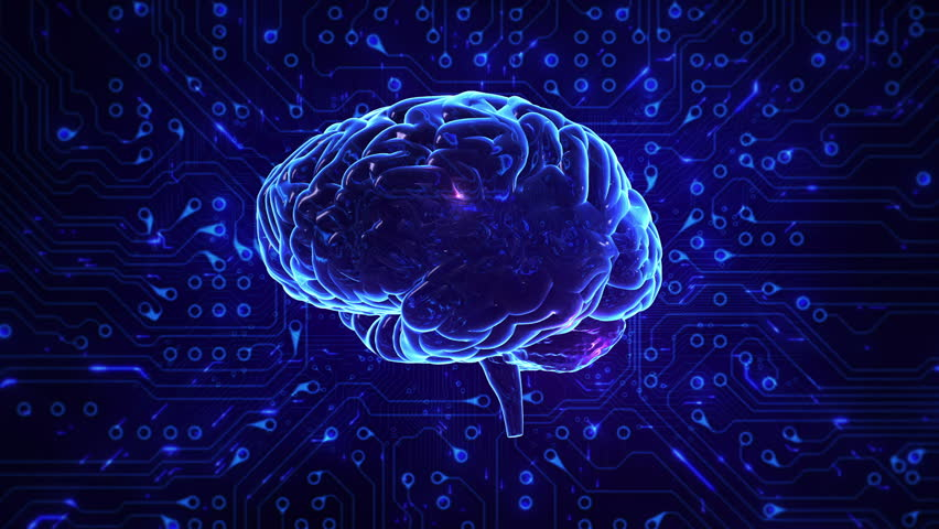 Spinning brain with circuit board background. Loopable. Blue. Black and white. Technology. More options in my portfolio.   Shutterstock HD Video #11728685