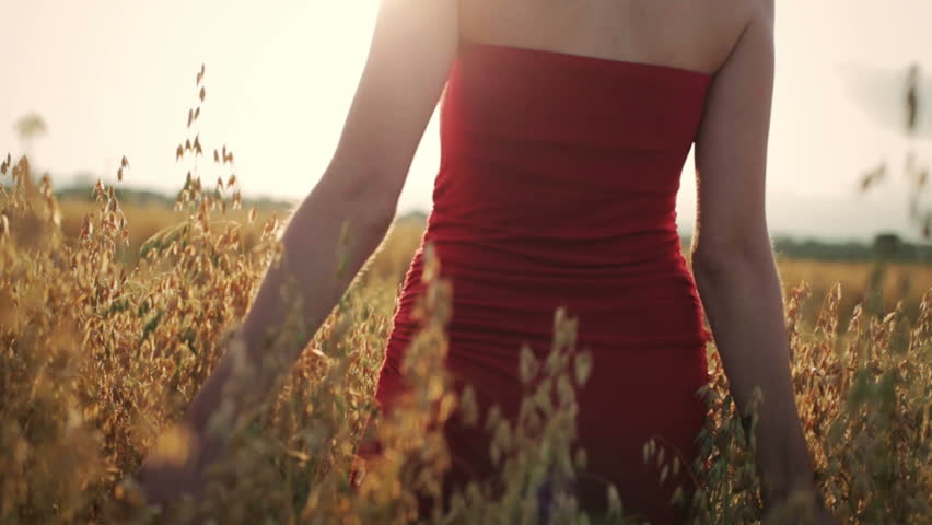 Life is Good, Life is Fun ! Woman Enjoying a Walk in a Wheat Field with a Beautiful Sunset in Background. #11732810