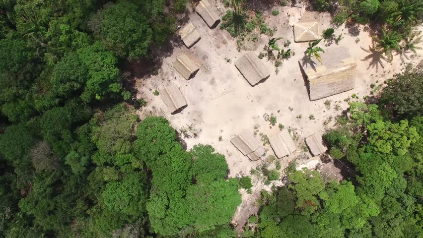 Aerial view of a Indigenous tribe in the Amazon, Brazil