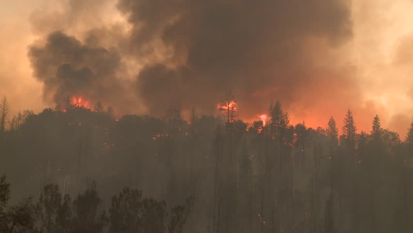 FOREST FIRES OF NORTHERN CALIFORNIA SUMMER 2015 WILD FIRES SMOKE FLAMES FIREFIGHTER CREWS BATTLE THE FIRES DURING THE DRY DROUGHT CONDITIONS HD HIGH DEFINITION STOCK VIDEO FOOTAGE CLIP 1920X1080 | Shutterstock HD Video #11914070