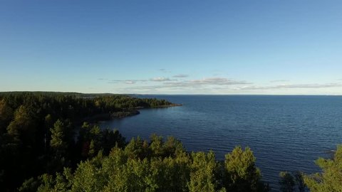 Aerial View of Tree Tops on Rocky Lake Shore