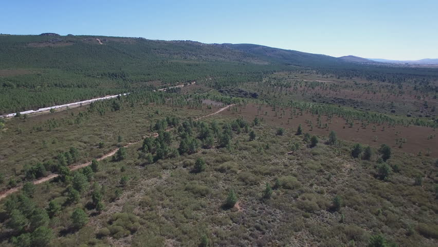 Aerial view of train in the forest, Following camera in 4k | Shutterstock HD Video #12066290