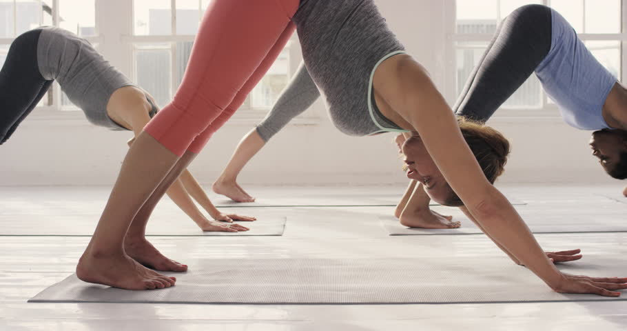 Yoga class multi racial group of women exercising healthy lifestyle in fitness studio yoga downward dog chaturanga poses