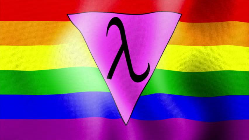rainbow flag rainbow triangle flag lambda rainbow flag gay rights gay x View 3