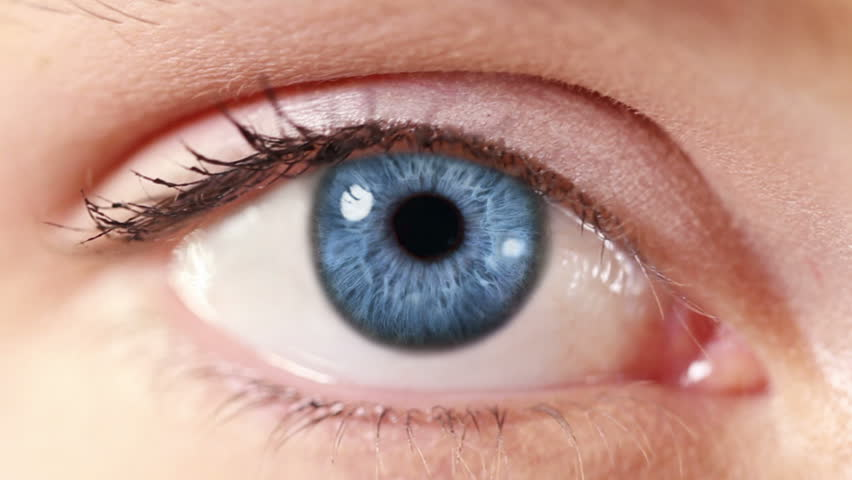 Human Eye. Blue and green. Blue and regular skin. 2 in 1. Close-up of a colored eye blinking. Each video is loopable. | Shutterstock HD Video #13807586