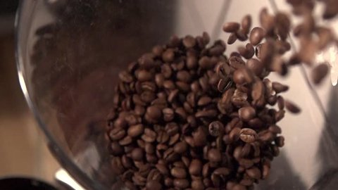Coffee beans are being filled in coffee grinder in slow motion