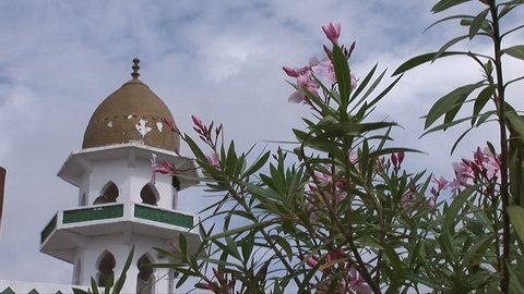 Beautiful flowers beside a mosque on the Frankincense Trail in Oman