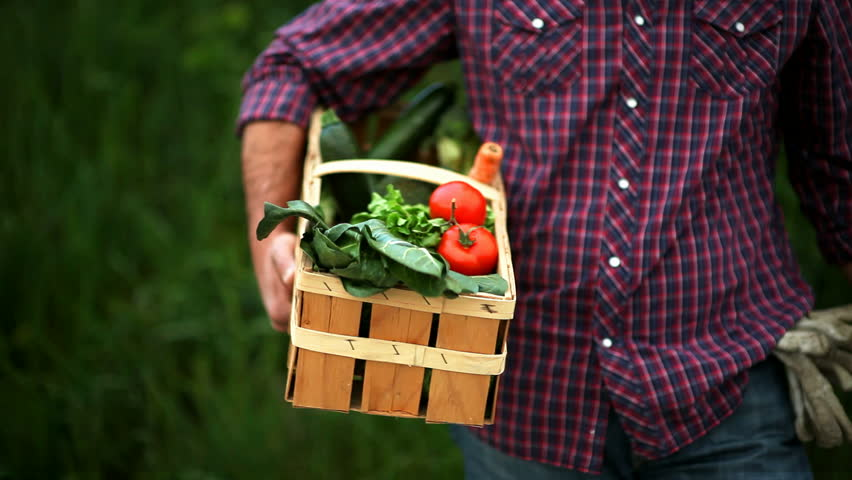 Portrait of a smiling farmer holding vegetables basket; Full HD Photo JPEG
