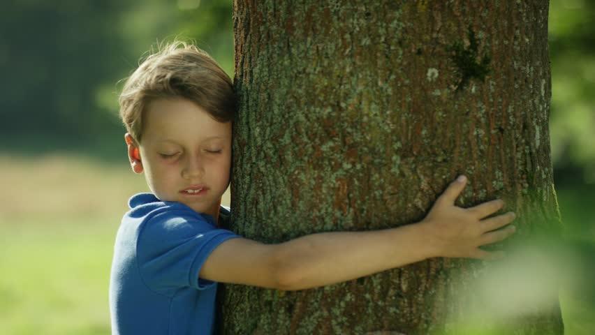 Child hugging tree    Shutterstock HD Video #14862190
