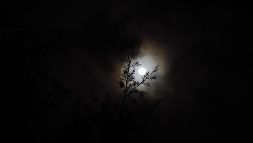 The moon with a cloud halo on a misty night through tree branches. | Shutterstock HD Video #14887090