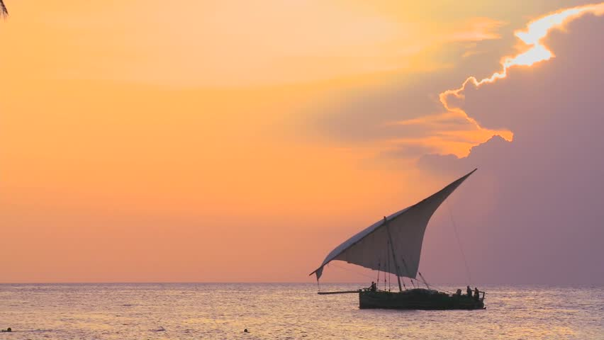 A beautiful shot of a dhow sailboat sailing along the coast of Zanzibar against a beautiful sunset.