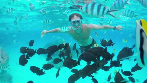 SLOW MOTION HALF UNDERWATER: Young diver man snorkeling and swimming underwater, exploring tropical reef with beautiful colorful exotic fish in crystal clear lagoon ocean in French Polynesia