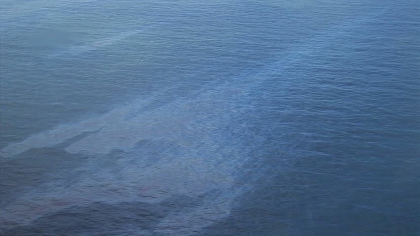 Oil in the Gulf of Mexico from the BP Oil Spill