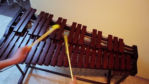 hands play on the xylophone