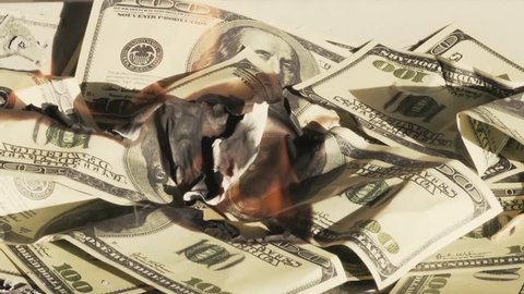 Burning Money (Debt, Taxes, Financial Cliff, Overspending) Quick time
