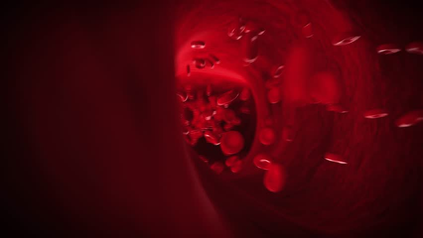 medical 3d animation of blood pumping through an artery