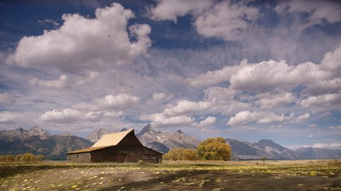 Grand Teton historic Mormon pioneer barn with autumn leaves blowing across is slow motion. Wide shot. Dramatic clouds and sky. Grand Teton National Park, Wyoming, USA. 4K.