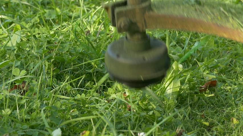 Ungraded Mowing Lawn Grass Cutting Weed Control