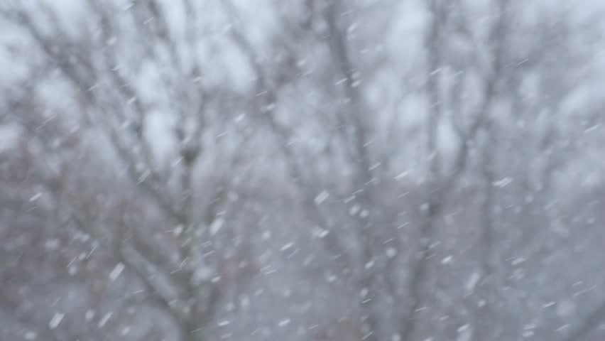 Heavy snowfall with wind - snowflakes go down diagonal and fast - snowfalling close up, shallow depth of field, low contrast, blurry. Sudden bad weather in the mid of April in Saint Petersburg, Russia   Shutterstock HD Video #15917890