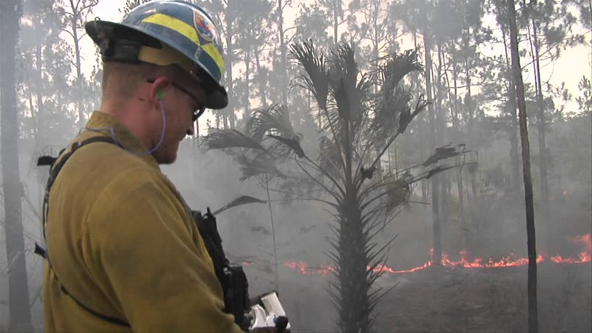 EVERGLADES, FL - CIRCA 2009: Firefighters fire a flare during a prescribed fire circa 2009 in the Everglades.