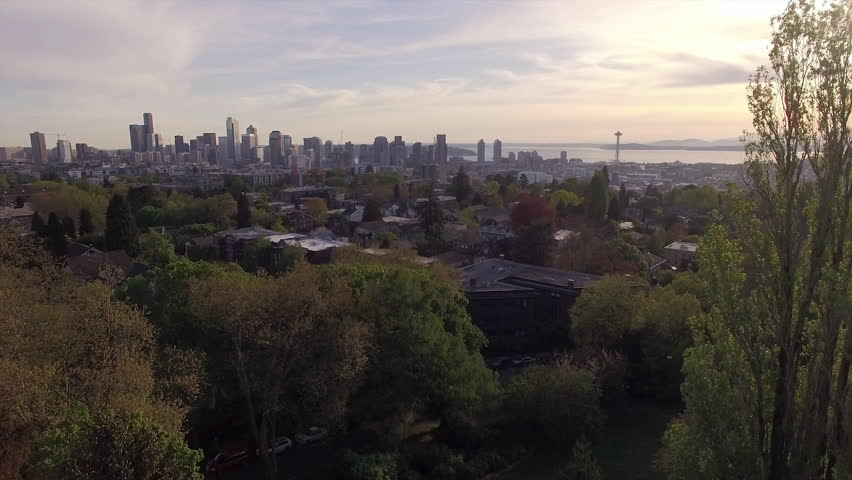 Seattle Washington Downtown Sunset Tree Reveal Stock Footage Video - Flying to seattle washington