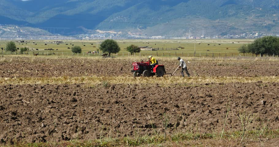 Oct 20,2015:4k tibetan people use farm tractor Arable land in shangrila yunnan,china. gh2_10437_4k
