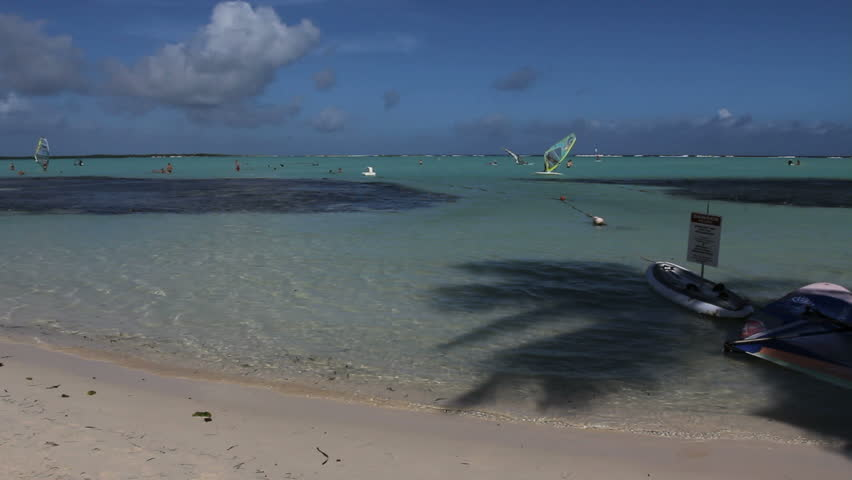 September 2011 - Bonaire -  Shadow of palm tree and windsurfer