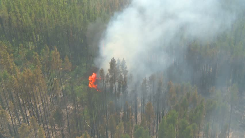 aerial, gyro-stabilized, over forest fire small flames below