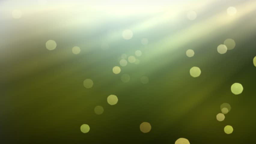 blurry nature background and glowing sunshine with bokeh effect  stock footage video 3404492