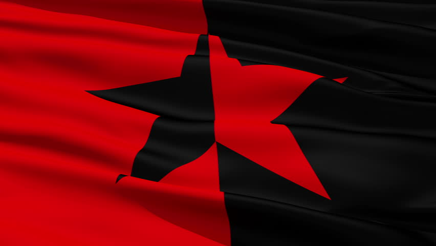 Red and Black Star Flag, symbolizing the co-existence of anarchist and socialist ideals.