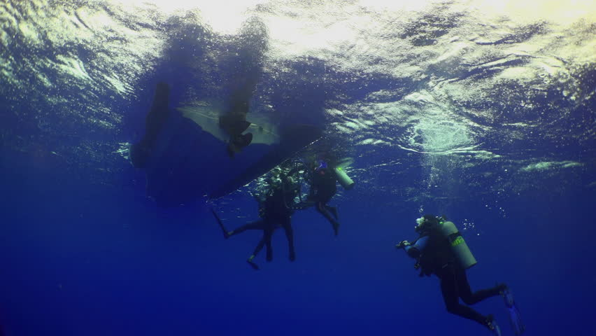 Divers ascend from seabed depth along the ropes, Caribbean sea Cocos Costa Rica. Underwater landscape, rocky pinnacles, canyons, walls and caves. Beautiful array of marine life ready for exploration. | Shutterstock HD Video #16772152