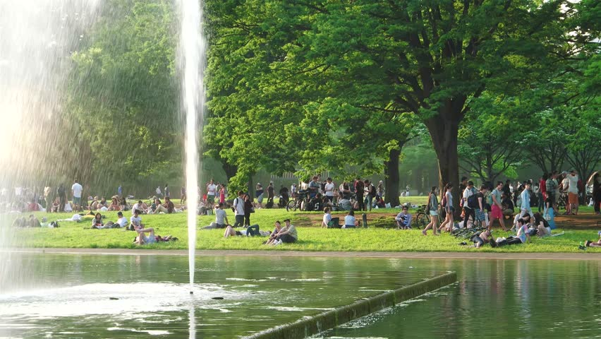 Tokyo - May 2016: Pople gathering in Yoyogi park on a sunday afternoon by the lake with fountain. 4K resolution