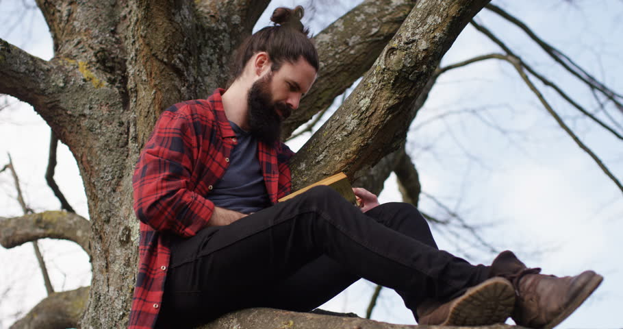 4K Getting away from it all - Young casual man sitting in a tree & reading a book | Shutterstock HD Video #17037241