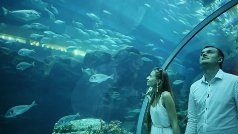 Guy and Girl walk on an underwater aquarium.