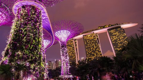 gardens by the bay night tourist famous show hotel panorama 4k time lapse singapore