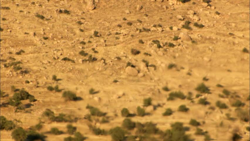 Static shot of heat haze effect in desert. Real footage.