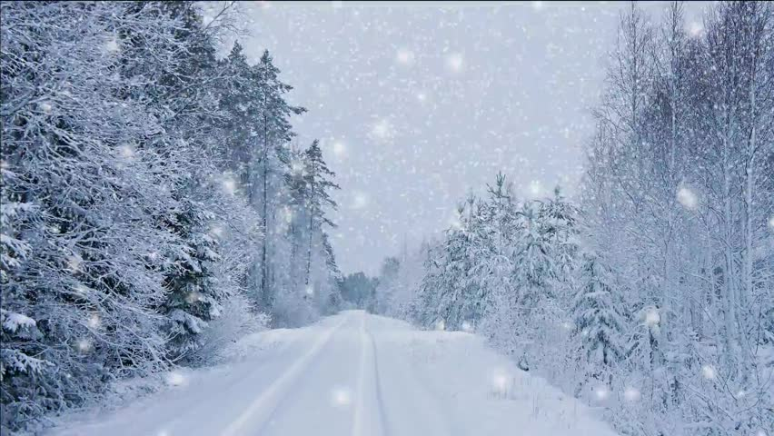Sparkling winter wonderland with falling snow sparkling - Free screensavers snowflakes falling ...