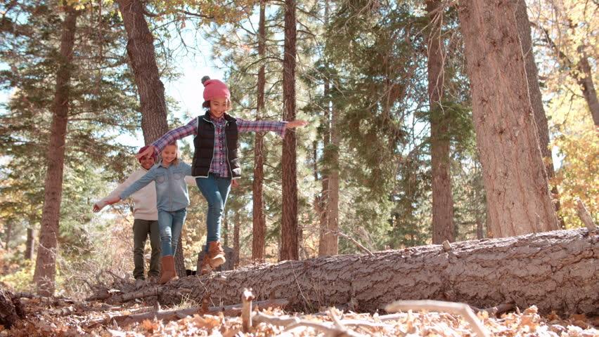Three kids balancing on a fallen tree in a forest | Shutterstock HD Video #17944240